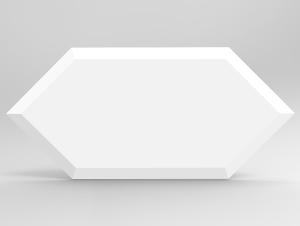 SONIC - WHITE FLASH